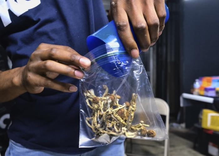 In this May 24, 2019, file photo a vendor bags psilocybin mushrooms at a pop-up cannabis market in Los Angeles