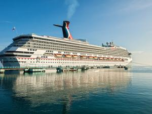 Cruise Giant Carnival Says Customers Affected by Breach